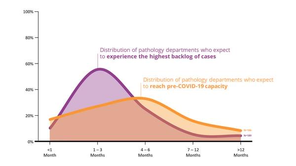 Survey Results - Capacity vs. Backlog Expectations