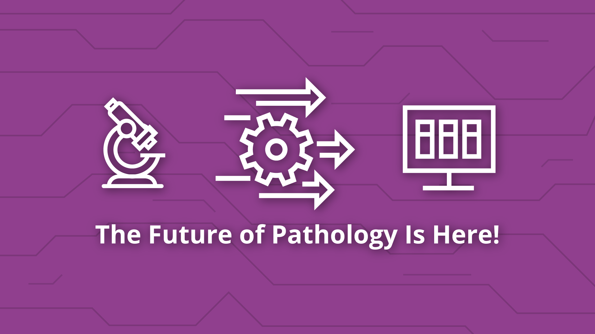 Lessons from COVID-19: Embrace Digital Pathology and AI to Move Fast!